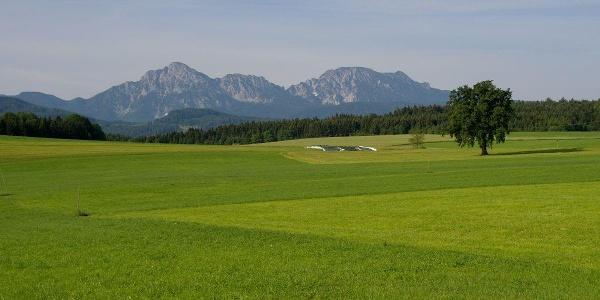 Blick auf Hochstaufen und Zwiesel bei Sillersdorf