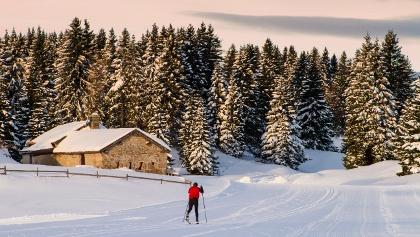 Skiabfahrt im Naturidyll