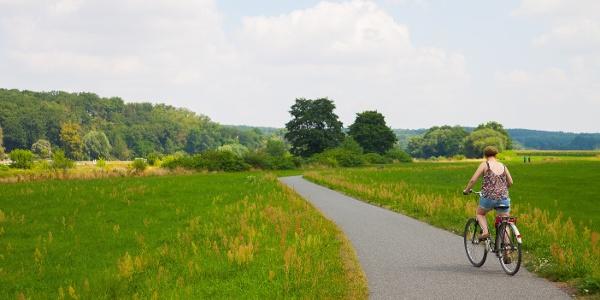 Radweg bei Grimma