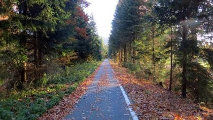 Mulderadweg bei Blauenthal