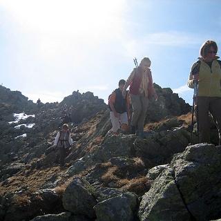 Zum Gipfel des Steinkogel - (2.299 m)