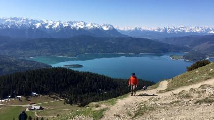 Auf dem Jochberg mit Blick zum Walchensee und links unten die Jocher Alm