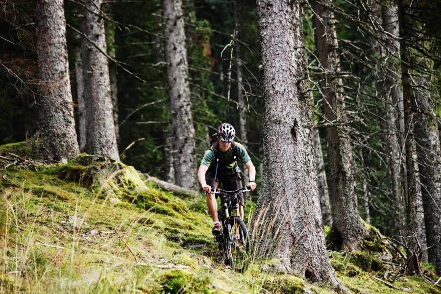 Reizvolle Berglandschaft und Wälder rund um Lenzkirch