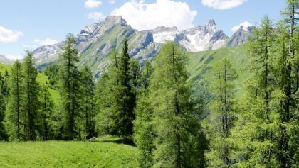 Blick vom Höhenweg Saxer Alpe - Alperschonertal zur Vorderseespitze (links) und Holzgauer Wetterspitze