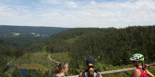 Sicht auf den Huzenbacher See