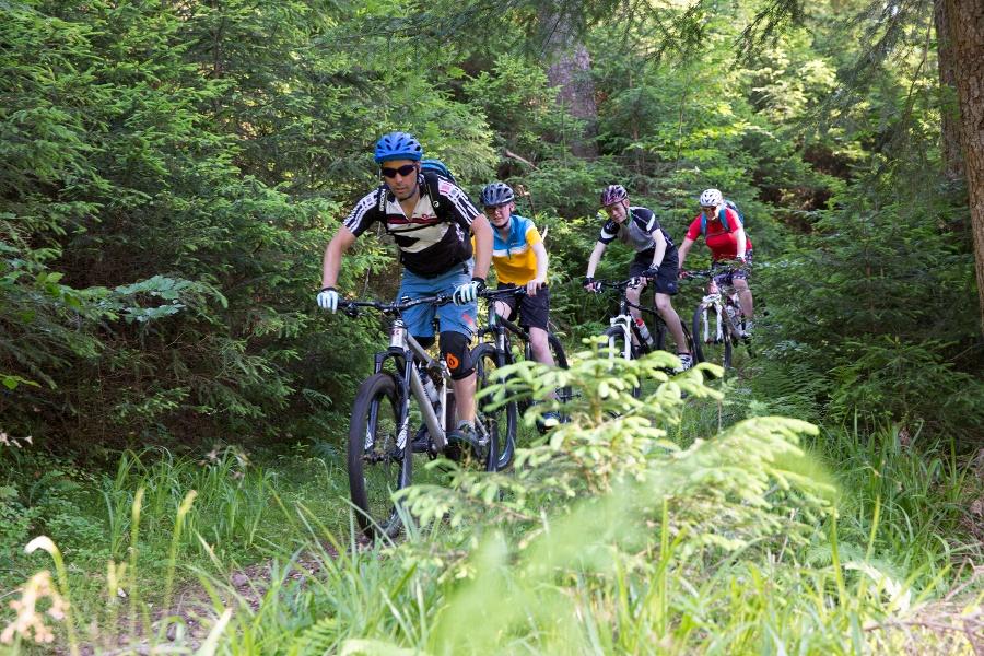 T6 Hirschkopf Trailtour