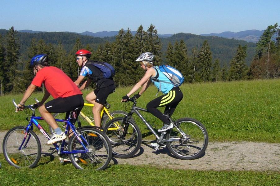 Höchenschwand: Fahrradweg entlang der Flussläufe