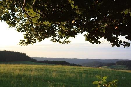 Landschaft bei Ibach