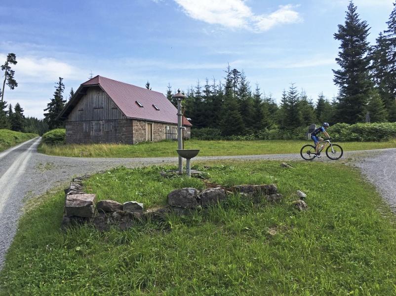 Moorpackung Tour - Mit dem Mountainbike zum Hohlohturm