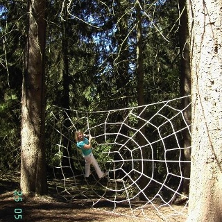 Walderlebnislandschaft Kelberg
