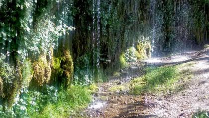 Rinnende Mauer, Naturdenkmal