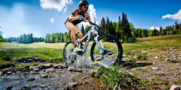 Mountainbiken auf der Frauenalpe