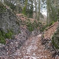 """Hohlweg """"Große Egge"""""""