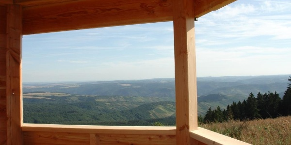 Blick zum Rhein und auf die Höhen des Taunus.