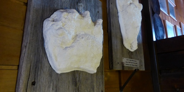 Footprint of bear Bruno (Obwald hut)