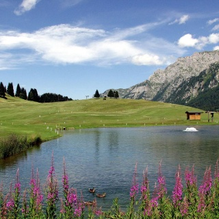 Little lake near the golf course in Campo Carlo Magno
