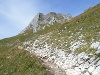 Auf-Blick oder Weg-gehen  - @ Autor: kUNO  - © Quelle: Tourismusverband Tannheimer Tal