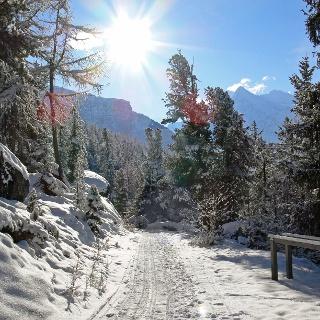 Winterwanderung Grächen