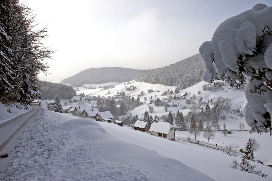 Tour ins Tonbachtal