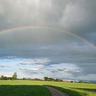 Regenbogen über dem Kräutergarten
