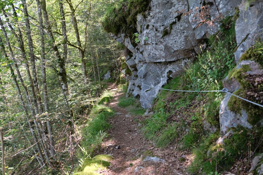 Von Höchenschwand über den Felsenweg nach Tiefenhäusern/Waldhaus