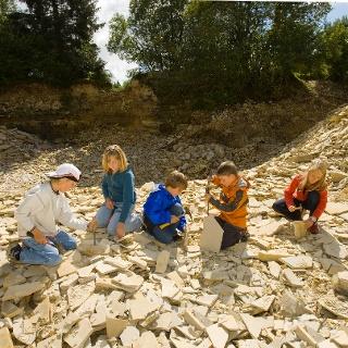 Fossilien suchen im Schiefersteinbruch