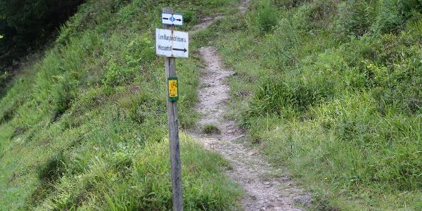 Natubelassene Wege führen zum Ziel