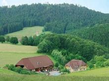Wolfach - Auf Hansjakobs Spuren
