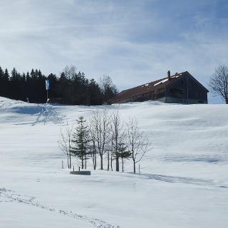 Winter at Sonthofer Hof