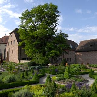 Hornbach Kräutergarten