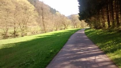 zwischen Wildberg und Bad Teinach