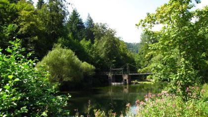 Blick auf die Nagold im Monbachtal