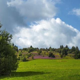 Das Biosphärenreservat Rhön ist eine einzigartige Landschaft