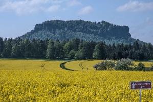 Foto Blick zum Lilienstein von Waltersdorf