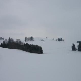 Bei der Alpe Hochegg