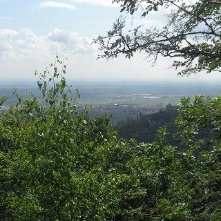 Von der Aussichtsplattform beim Bergstein blickt man in die Rheinebene und hinüber zum Hambacher Schloß.