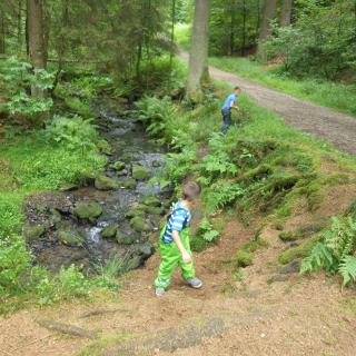 Kinder haben viel Spaß auch neben dem Hauptweg