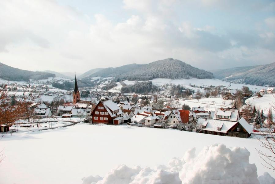 Nach Freudenstadt durch den Winterwald