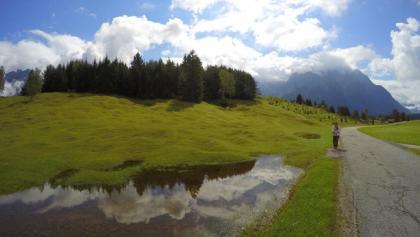 Der bequeme asphaltierte Weg durch die Buckelwiesen