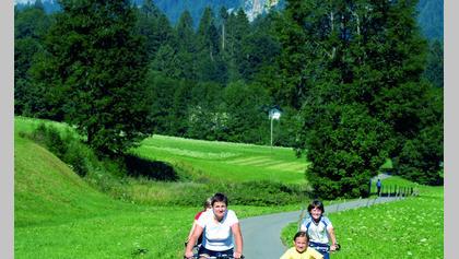 Radweg Bregenzerwald