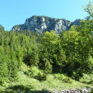Blick auf den Hohen Straußberg