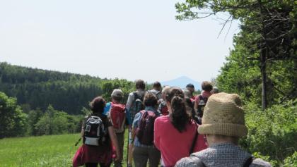 Wanderung um Zinnwald