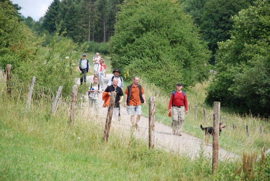 Foto: Partnerweg des Eifelsteiges: Eifeler Quellenpfad_Jakobsweg
