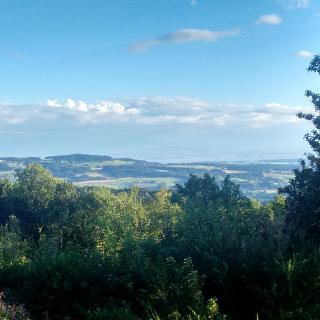 Panoramabild vom Bergstüble