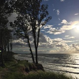 Steilküste mit Buchen bei Stolpmünde (Ustka)