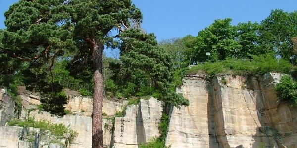 Der Kriemhildenstuhl ist der am besten erhaltene römische Steinbruch nördlich der Alpen.