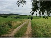 Weg Richtung Kottspiel - von Geifertshofen kommend  - @ Autor: Silke Rüdinger  - © Quelle: Hohenlohe + Schwäbisch Hall Tourismus e.V.