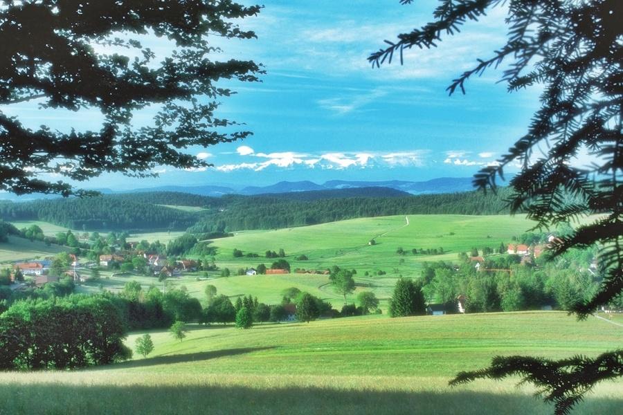 Herrischried: Ausblicksvolle Rundwanderung
