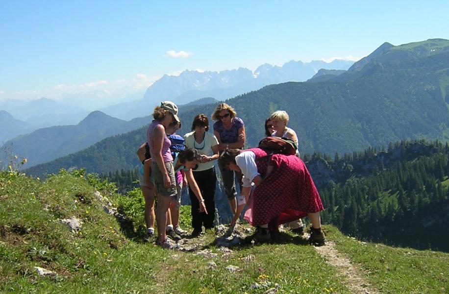 """Geführte Wanderung """"Bergblumen & Bergg´schichten"""""""