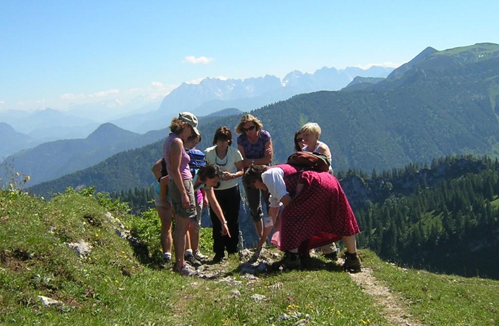 Bergblumenwanderung Kampenwand